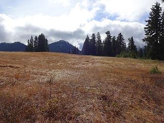 Meadow just below Scorpion Mtn.