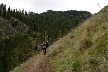 View along the West Fork Rapid River Trail, Seven Devils Mountains, Idaho.