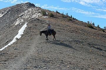 Horse at Oval Pass