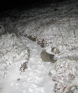 Snowy trail to Granite