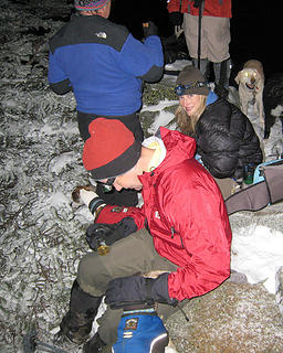 Huddled for warmth at the top