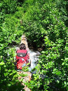 the bachelor creek log crossing