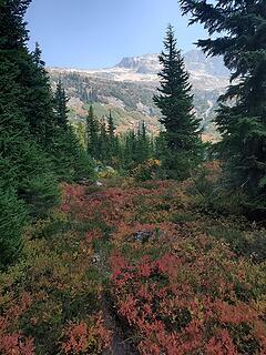 Autumn colors at Thunder Basin Hiker Camp
