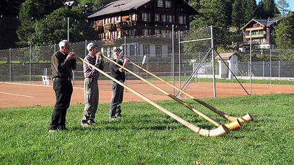 swiss-alphorns