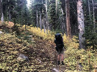 Heading up the West Buttermilk Creek Trail to Fish Creek Pass