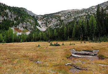 Meadow at head of Raging Creek, looking back toward Sylvester