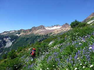 Alpine wanderings in view of Mt Minch