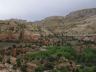 valley floor, Escalante River