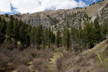 Potters Flat along the West Fork Rapid River, Seven Devils Mountains, Idaho.