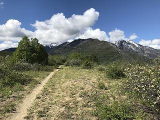 Rat Creek Ridge Trail
