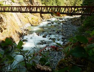 the suspension bridge over the Elwha
