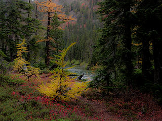 scottish lakes-7510