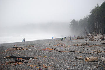 Rialto beach near TH
