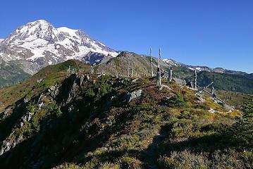 terrain leading higher
