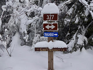 Palouse Divide Rd becomes a nordic ski area in winter.