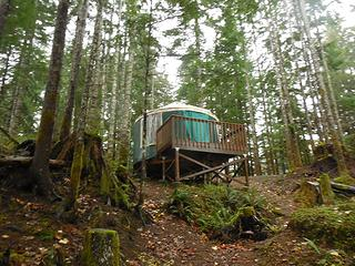 Yurts to rent in the Coho CG