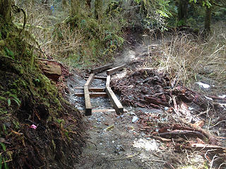 new trail under construction.