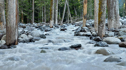 Carbon River going where it wants to go. Mt Rainier National Park, WA