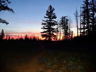 Sunset on the ridge above our camp at Dunlap Spring.