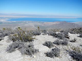 Salton Sea again