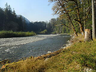 Looking down the Elwha (a little before reaching Elkhorn Camp)