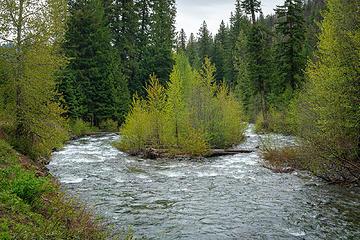 North Fork Teanaway River