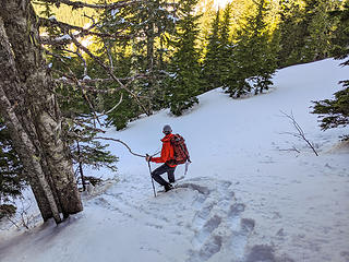 We traversed Coincidence Ridge to the lowest point and then dropped off onto the steep slopes down through the old forest. The snow was perfect for solid snow shoe steps.