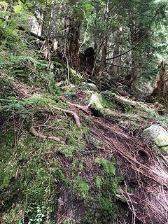 Lake Isabel Trail 4/25/19