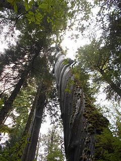 Cedar Grove Trail 092719 03