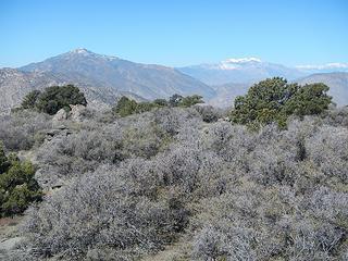 Toro, San Jacinto, San Gorgonio