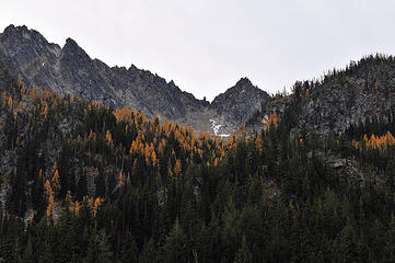 Larches color the hillside above Eightmile Lake