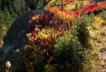 Meadow Garden arrangement 1