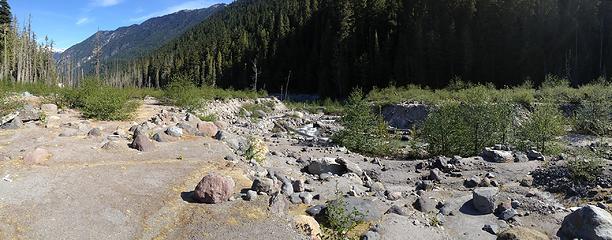 Dusty Creek flood plain near confluence of Suiattle River