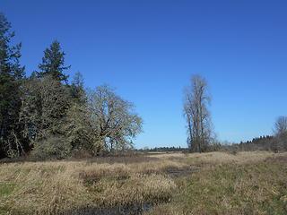 West Rocky Prairie Wildlife Area 022020 11