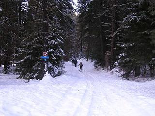 Reaching Hovey Creek XC trail