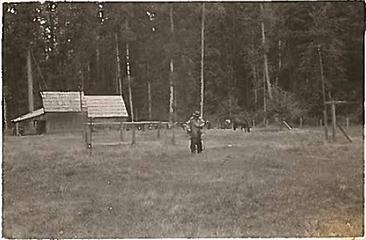 Smith Place - Queets Valley - 1930s - View north from center of clearing. Structure in background presumably barn/woodshed. photo courtesy S. Martinson