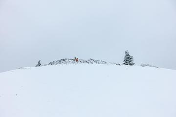 white summit