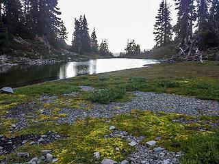 campsite surroundings