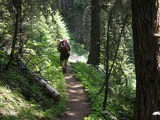 Armed forest ranger heading up Crystal Lake trail.