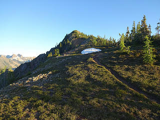 A trail leads to the top of Grasshopper Peak, 7125.'