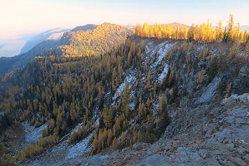 Larches on the shadowing side of our balcony camp