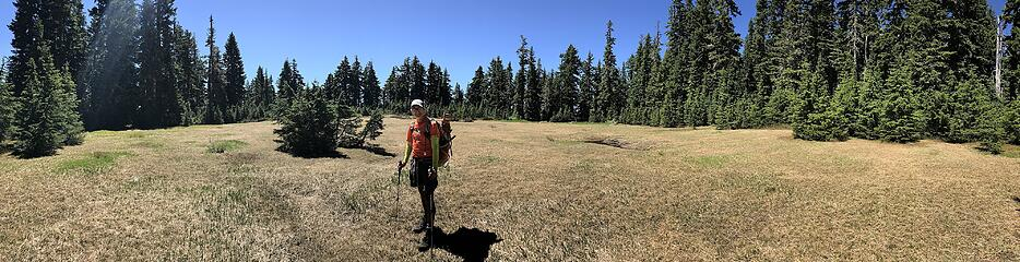 gorgeous meadow and cute hubski