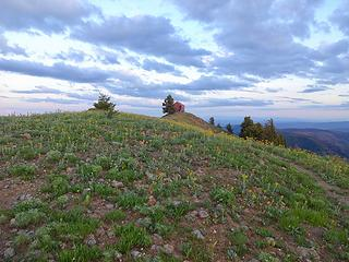 Oregon Butte Lookout, 6387.' This is the highpoint of Columbia County, Wa and a P2K summit.