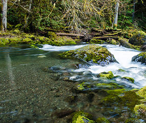Big Quilcene River 4