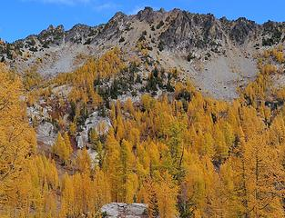 arrow of larches pointing the way to Squaretop