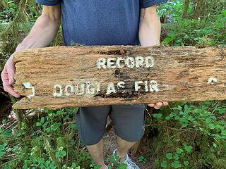 Record Douglas Fir Sign (front) 090620 SO