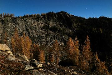 Moonlight on larches and Graham Harbor summit