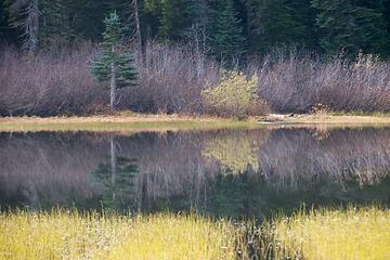 DSE_4251 - Fading Fall color reflections
