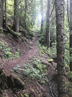 It's steeper than it looks