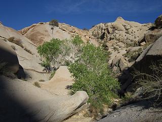 Grapevine dryfall waterhole